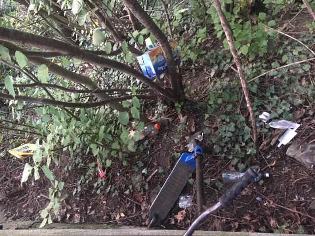 Hier zum Beispiel, vor einer Bank in Herrliberg, wird allerhand Abfall einfach die Böschung hinuntergeworfen. So bitte nicht!  (Bild Alex Plüss)