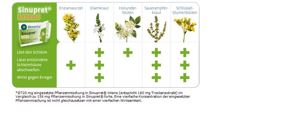 Sinupret intens Heilpflanzen Phytomedizin