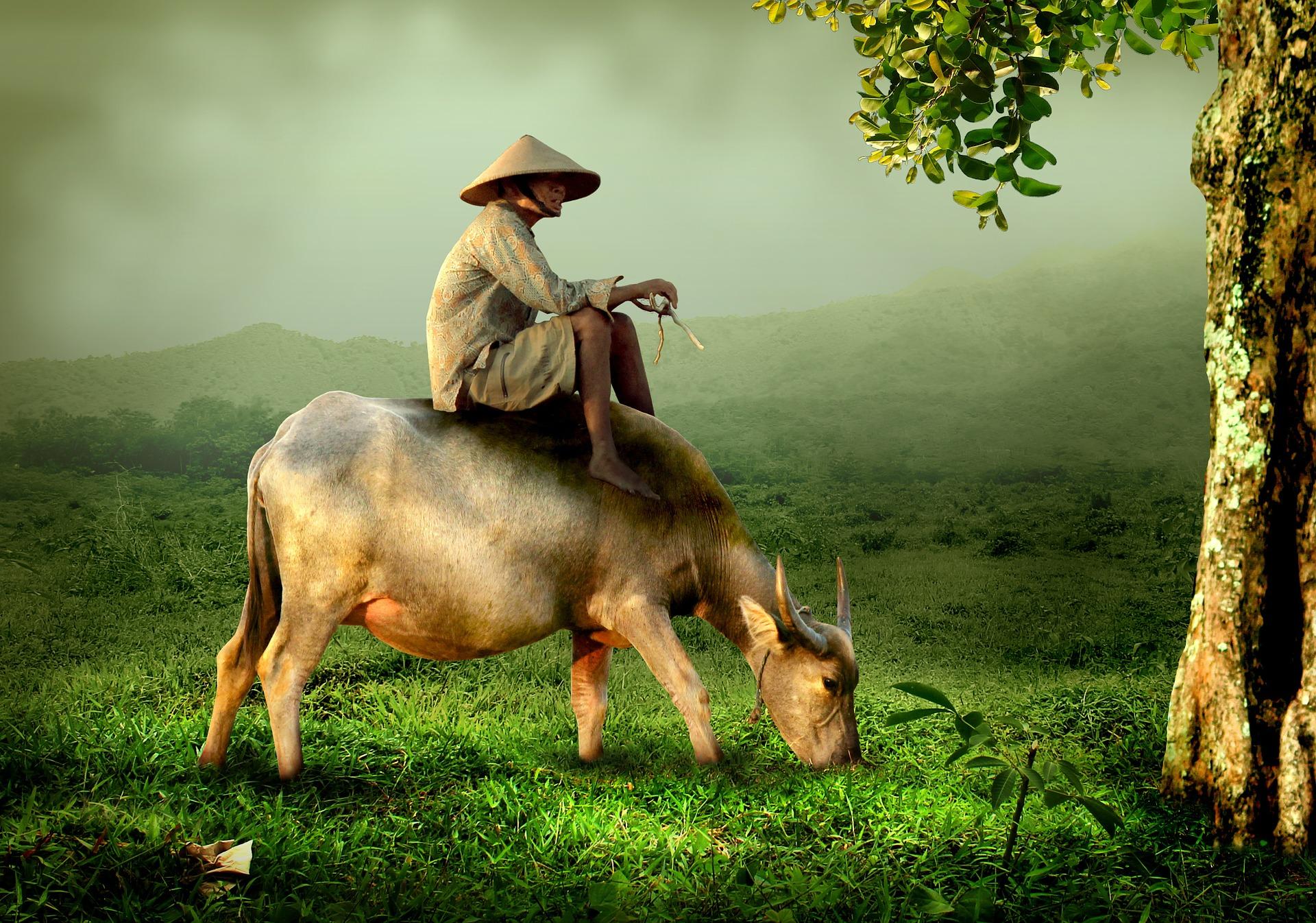 Die Geschichte vom Bauern und seinem Nachbarn