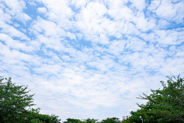 東京 練馬区 光が丘 出張撮影 公園フォト 光が丘公園 女性カメラマン 土日可能