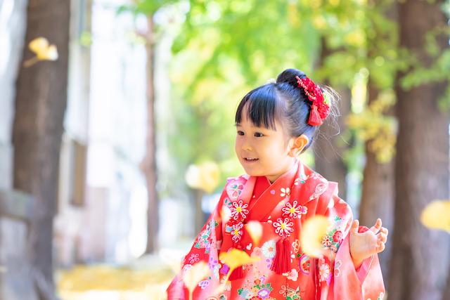 東京 板橋区 氷川神社 銀杏並木 出張撮影 七五三