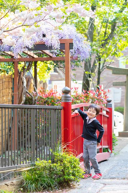 東京 富岡八幡宮 出張撮影 お宮参り こども  料金格安