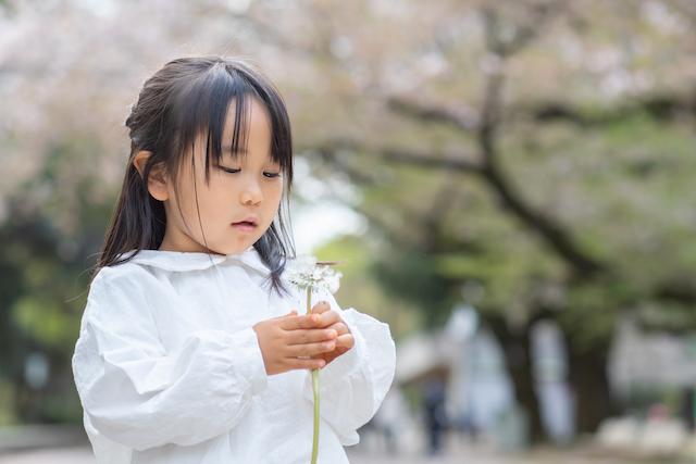 練馬区 光が丘公園 公園フォト 桜 子供 料金格安 出張撮影