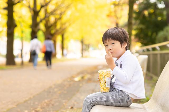 東京 練馬区 光が丘公園 カメラマン 出張撮影 入園