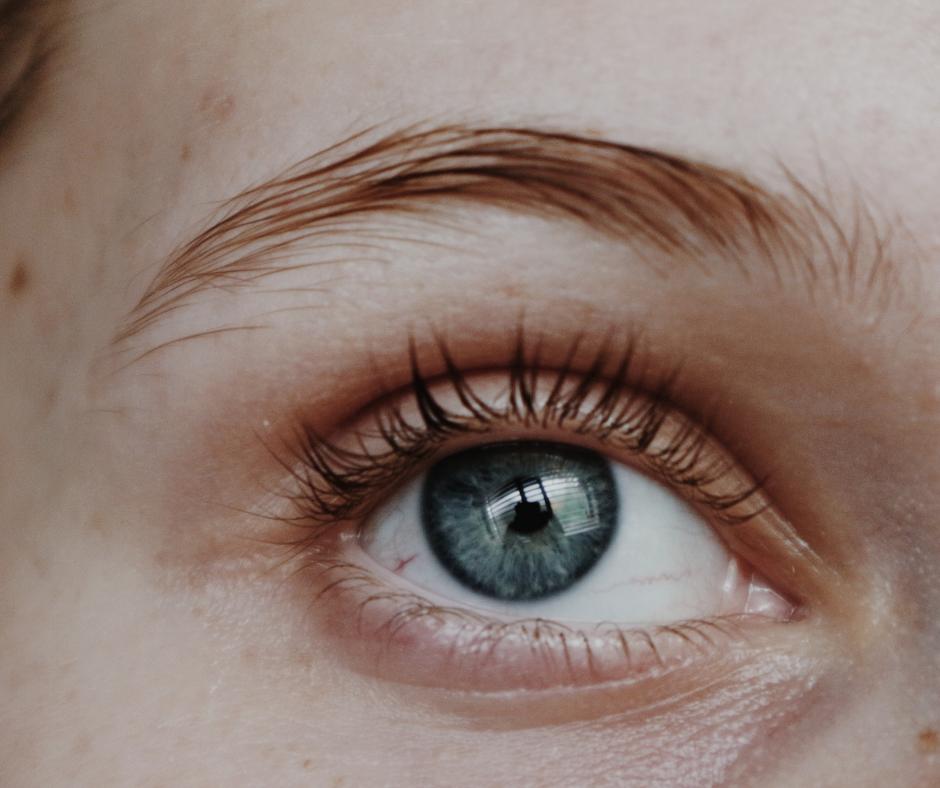 Wimpern & Augenbrauen