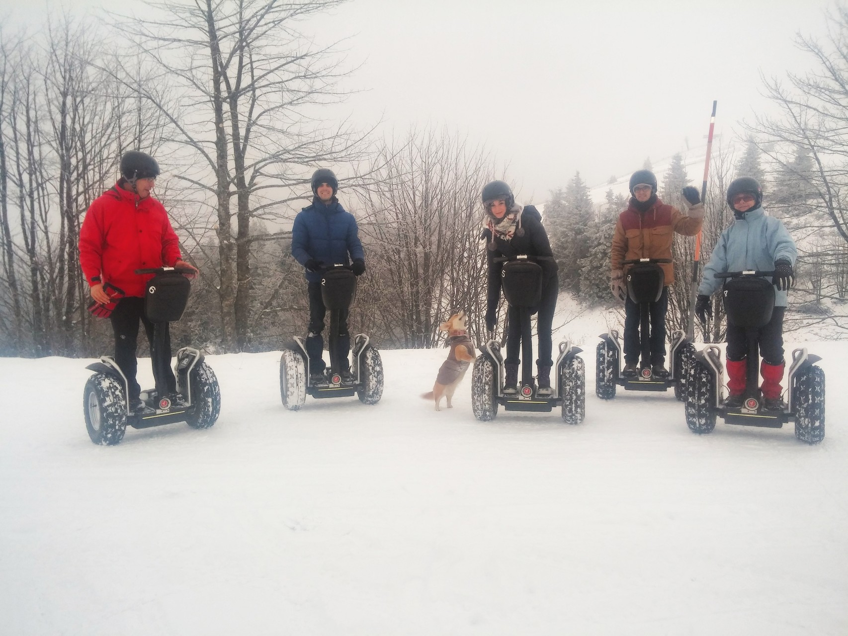 FUN MOVING GYROPODE SEGWAY EN ALSACE - Le Markstein, neige, Vosges