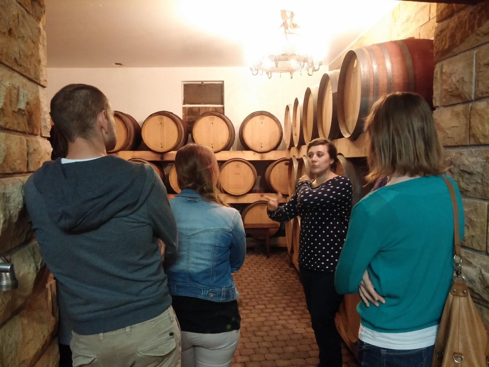 la salle des Pinots Noirs chez Materne Haegelin et filles à Orschwihr