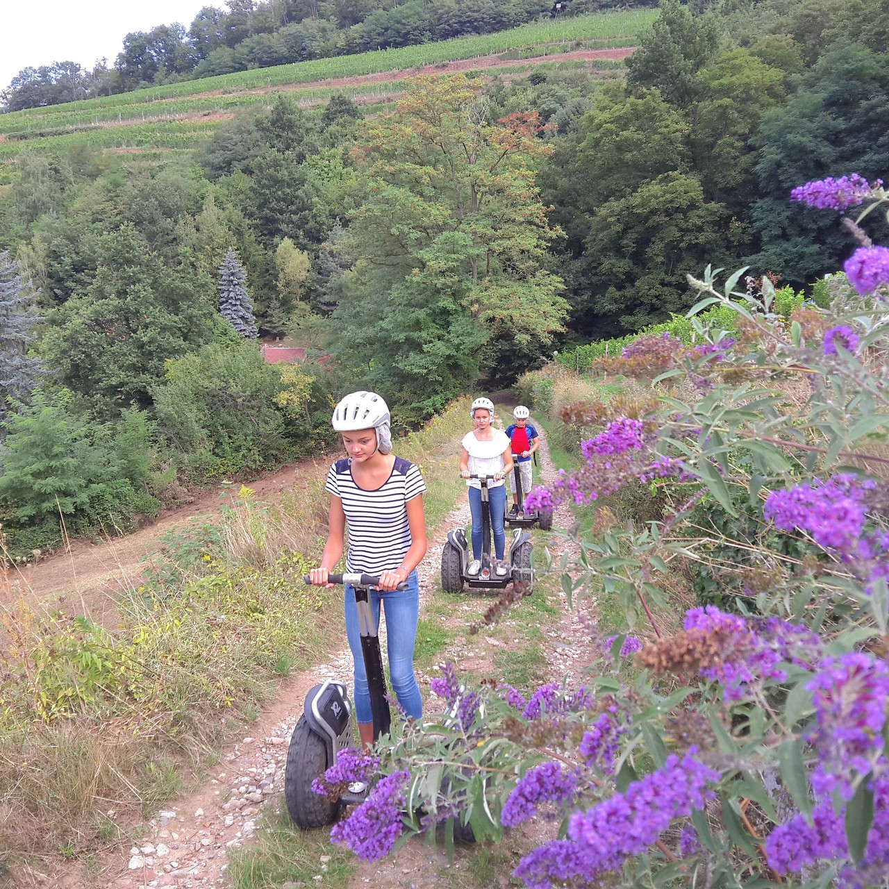 FUN MOVING GYROPODE SEGWAY EN ALSACE -  oenotourisme, vignoble Schlumberger