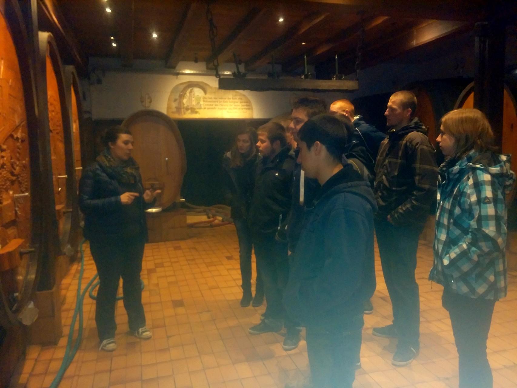 visite-dégustation à la cave Materne Haegelin et filles à Orschwihr