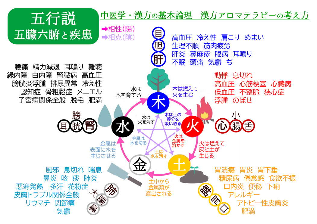FAQ 漢方アロマテラピー 基本論理