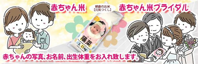 赤ちゃん米ギフト、赤ちゃん米ブライダル、内祝い、両親へ贈答品