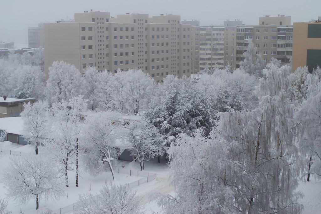 зима-вид с окна