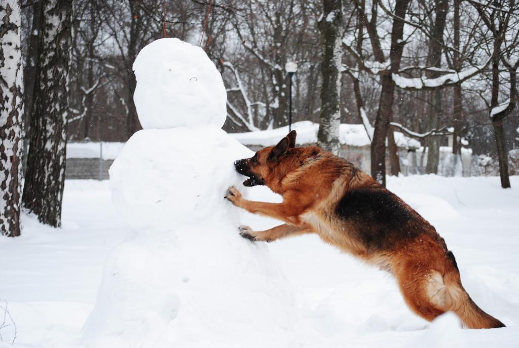 крушим снеговика