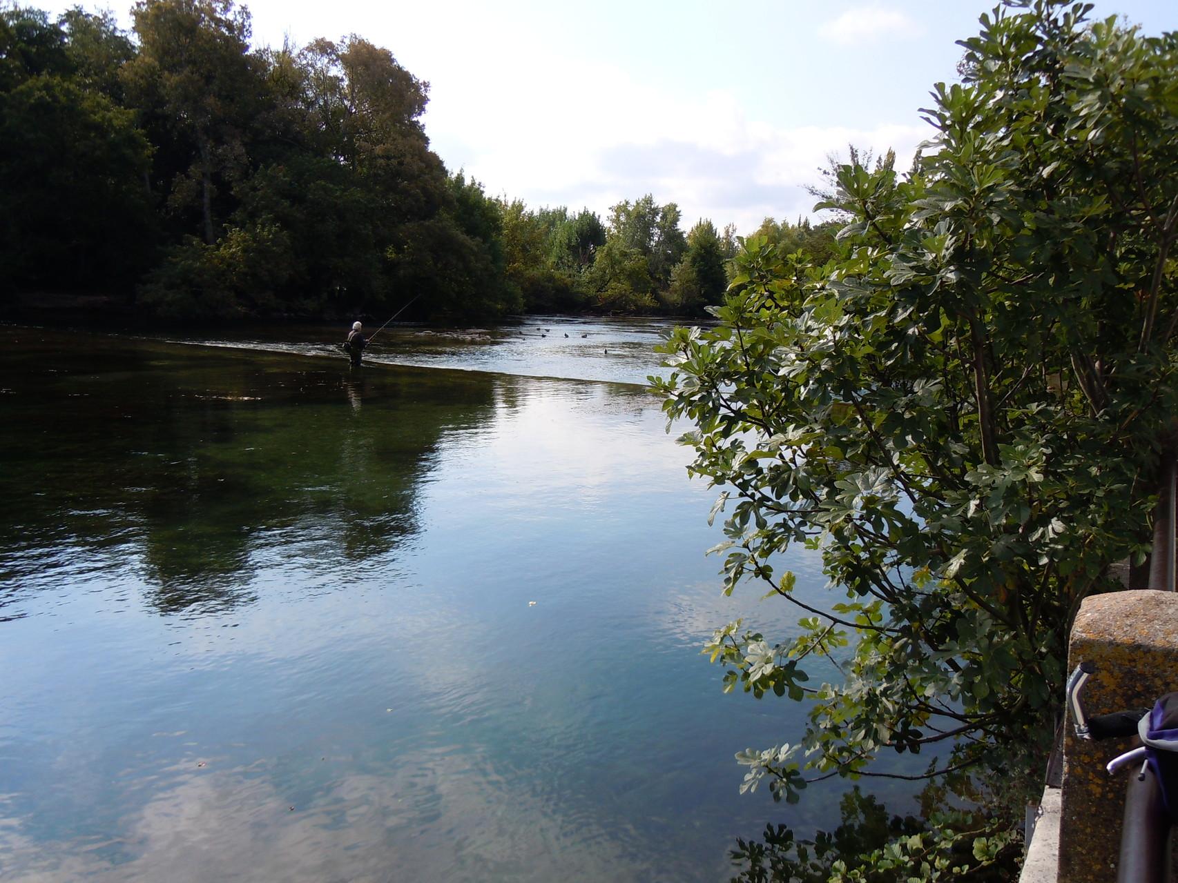 """""""Le partage des eaux"""" à l'Isle sur la Sorgue"""