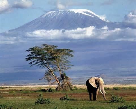 3) Mt. Kilimanjaro, Afrika