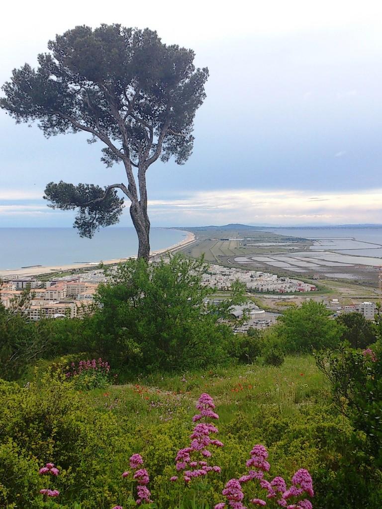 Sète - Vue panoramique