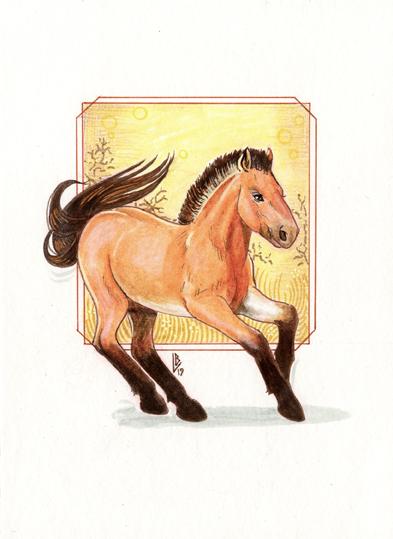 Cheval de Przewalski