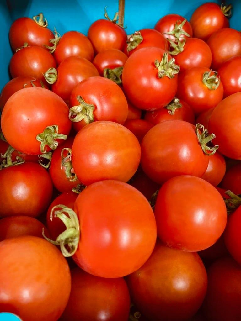 余市産トマト ファンゴッホ