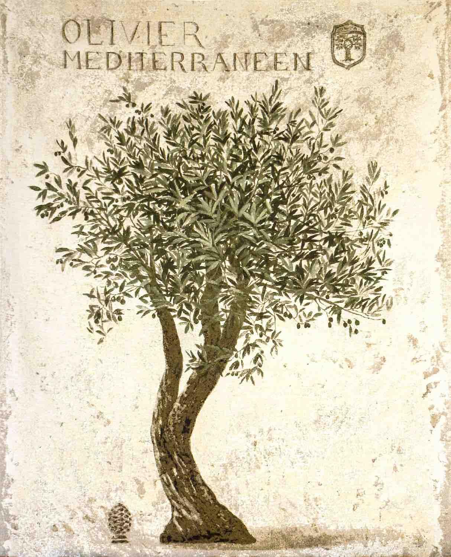 Wandgobelin OLIVENBAUM, 144 und 190 cm