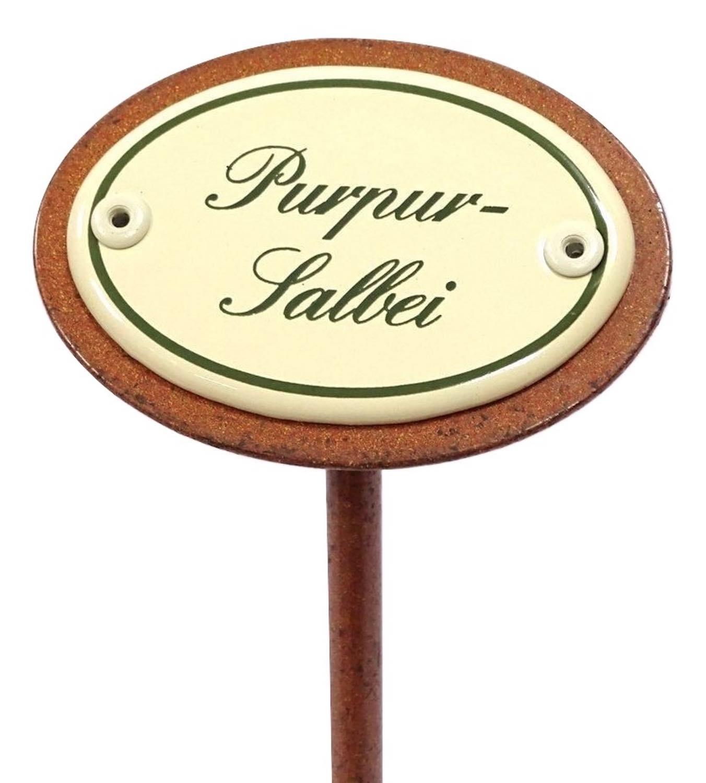Kräuterschild PURPUR-SALBEI