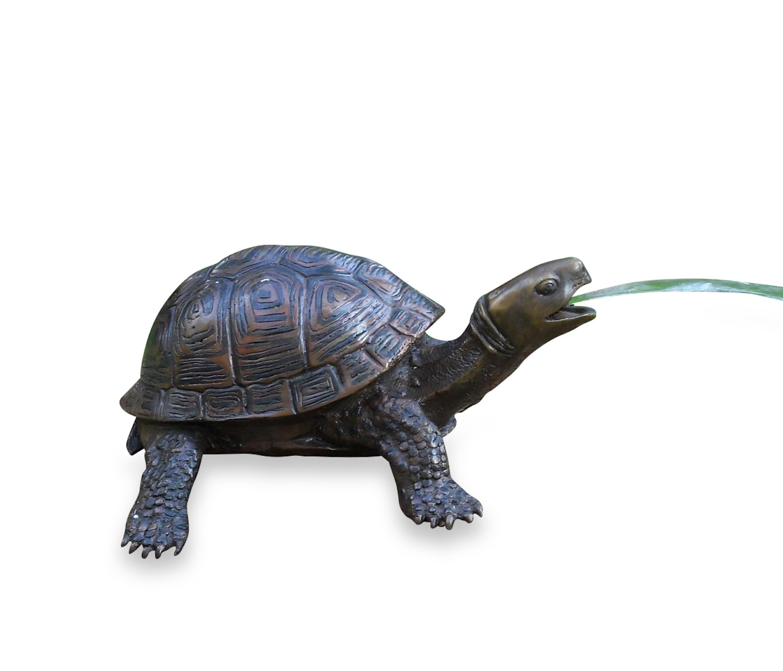 DAISY, Schildkröte, Bronze-Wasserspeier, Bronzefigur