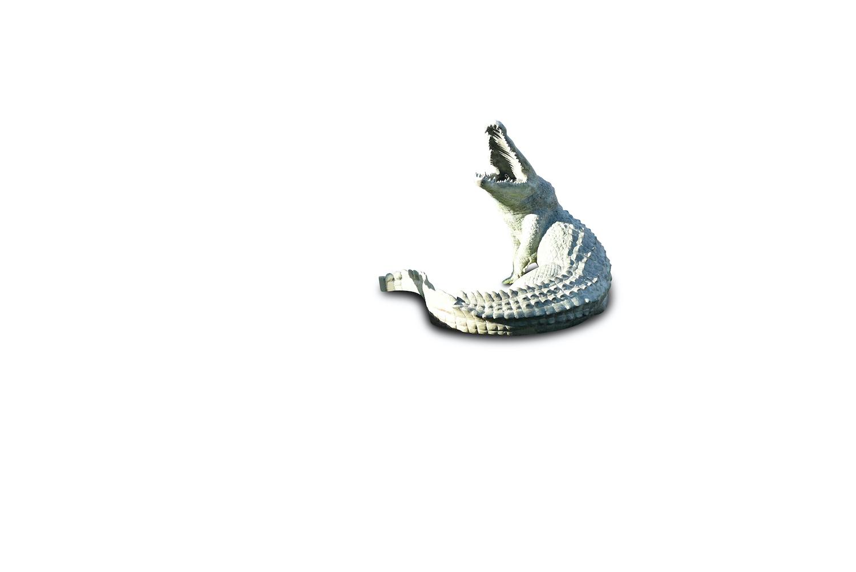 Bronzewasserspeier Krokodil JOE, 110 cm hoch