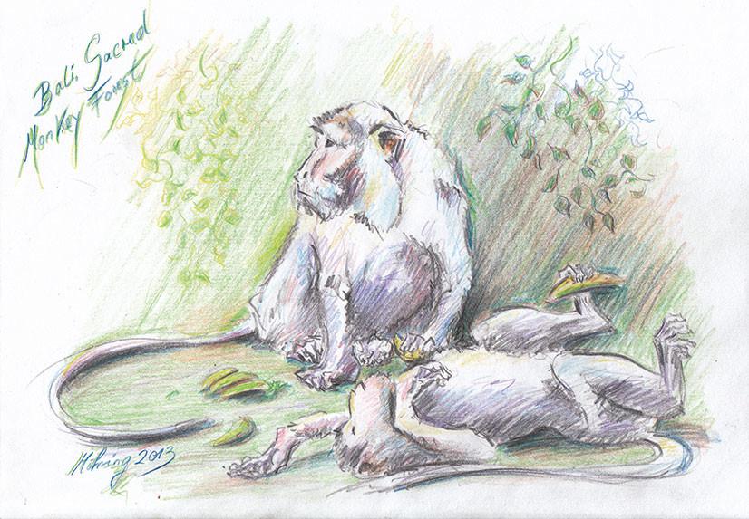 Sacred Monkey Forest II, Farbstift