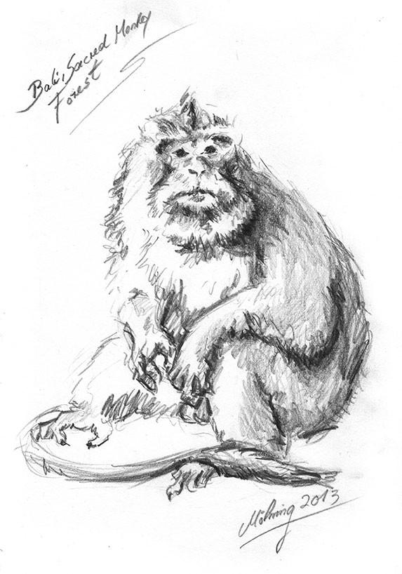Sacred Monkey Forest, Bleistift