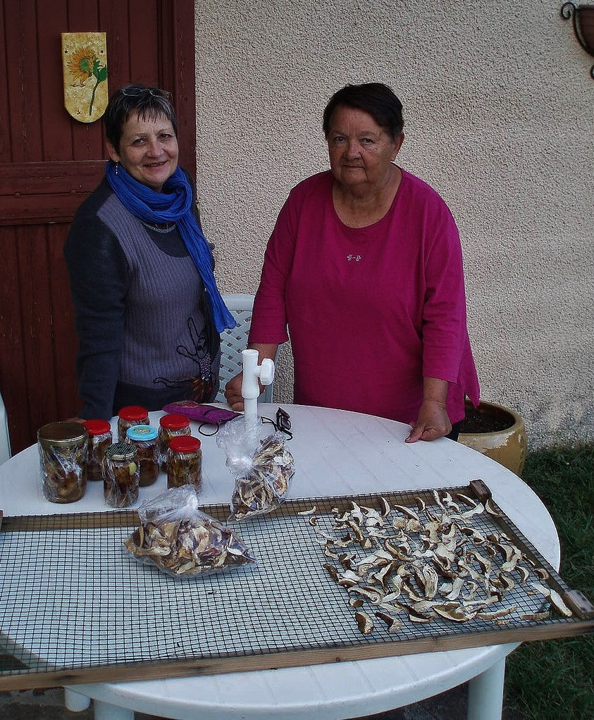 Monique et Solange, championnes de la cueillette de champignons.