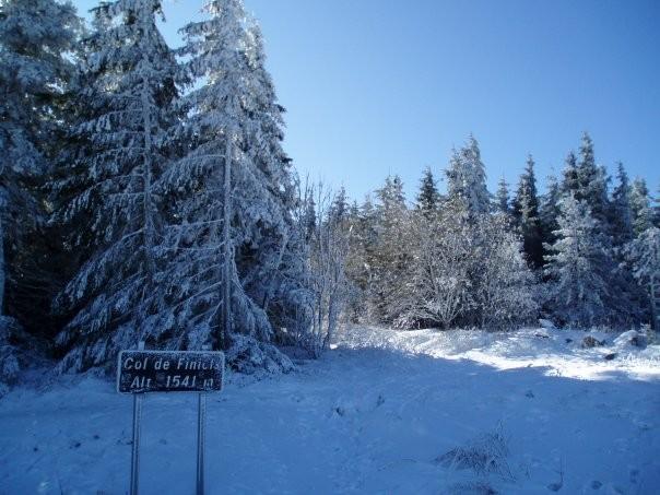 Sur le mont Lozère