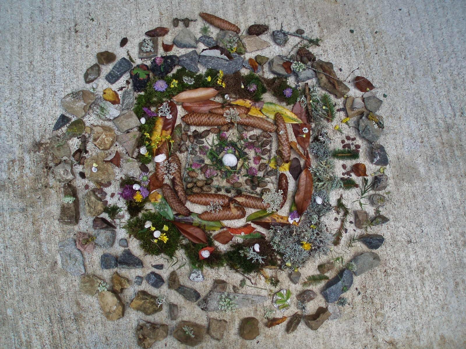 Un mandala, réalisé par les enfants.