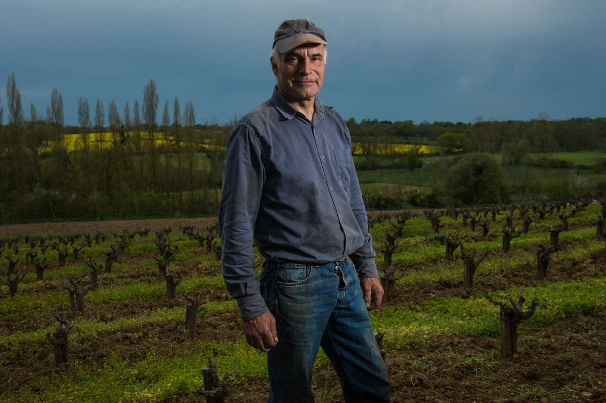 Angers - Saumur, le business du vin - Winemakers of the Loire Valley - Mark Angeli, Domaine de la Sansonnière à Thouarcé / L'Express (2016)