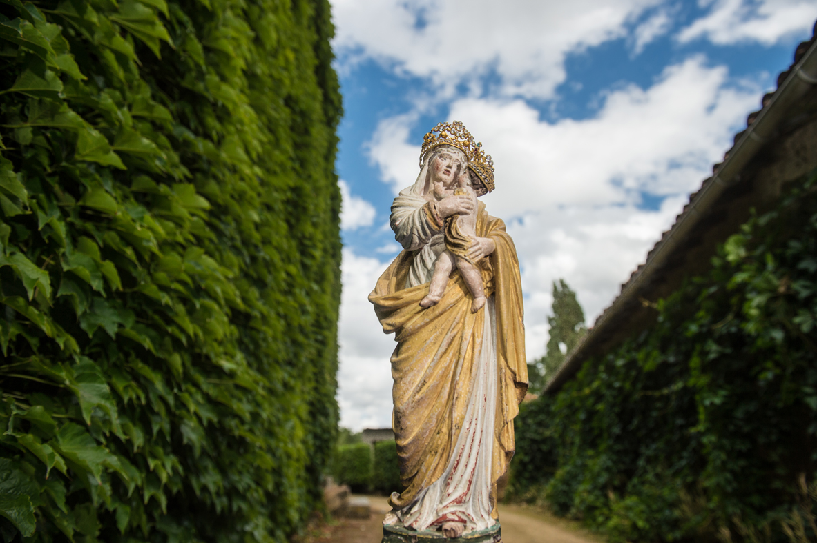 """""""Les Vierges sylvicoles"""" en France - """"The silvicultural Virgin Mary"""" in France / Pèlerin (2017)"""