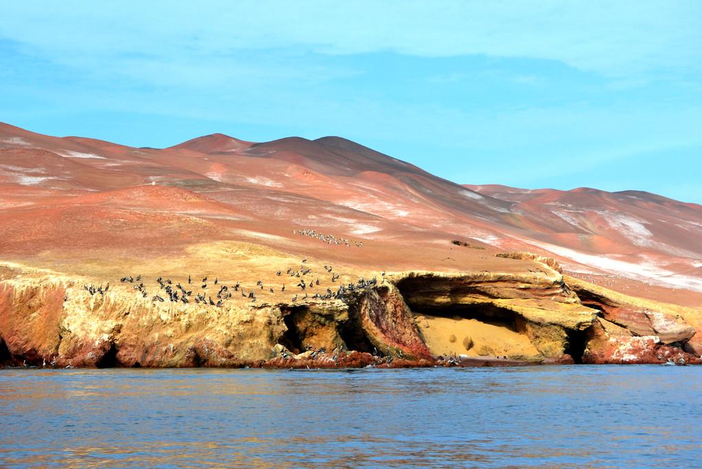 riserva di paracas