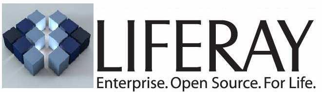 EKXEL IT Services  Luxembourg Jobs Liferay Java J2EE Developper permanent position for immediate start