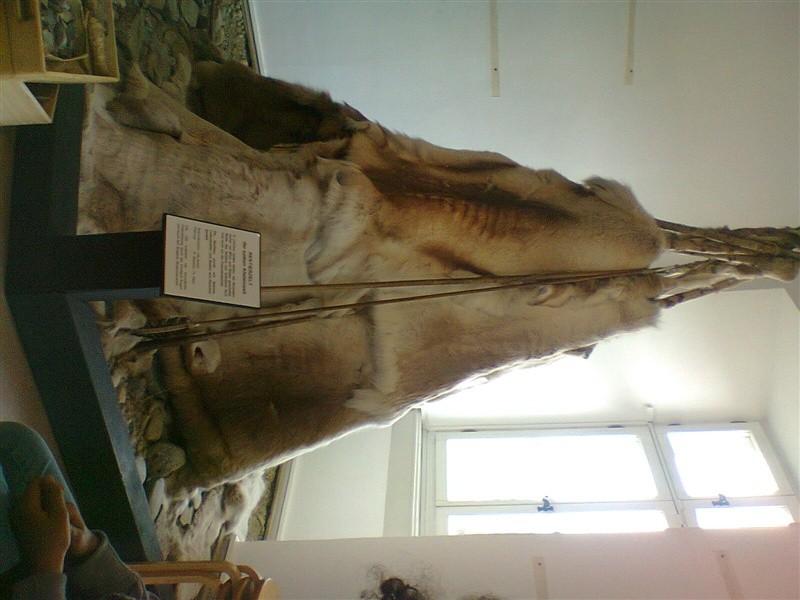 Besuch im Hegaumuseum