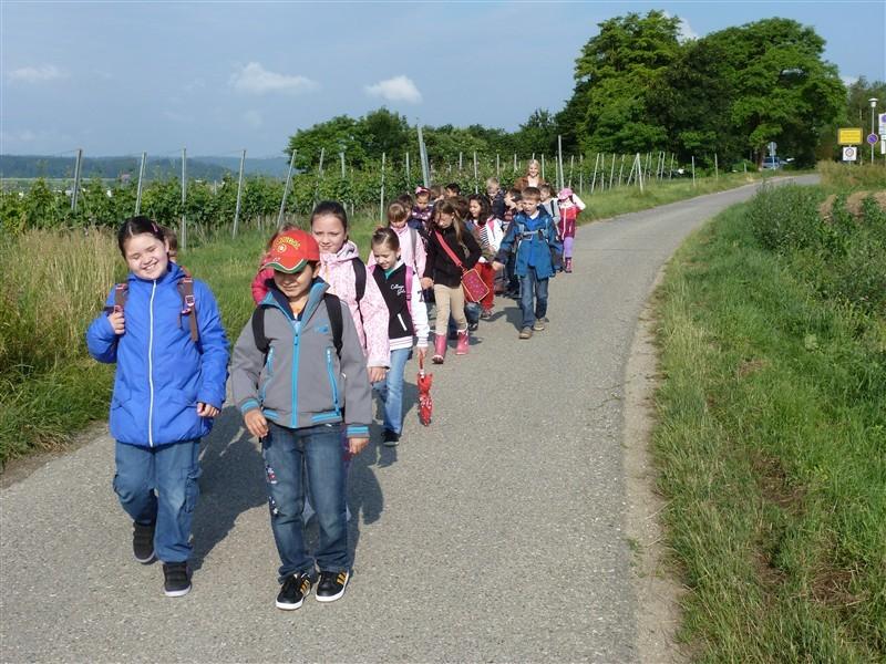 Exkursion der Klasse 2a zum Johanni-Hof