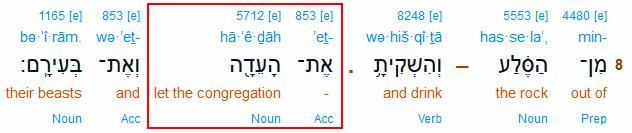 Teilauszug der Interlinearübersetzung zu 4. Mose 20,8