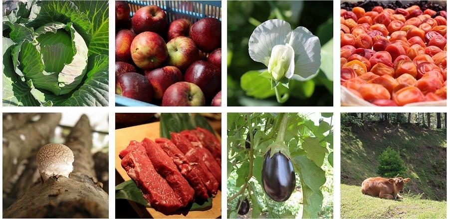 野菜・果物・肉・牛・きのこ・梅干しのイメージ写真