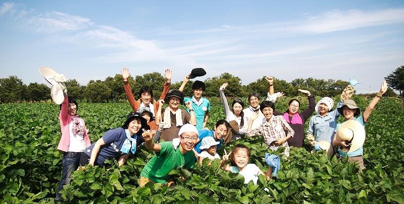 大豆畑で農業体験をしている人の写真