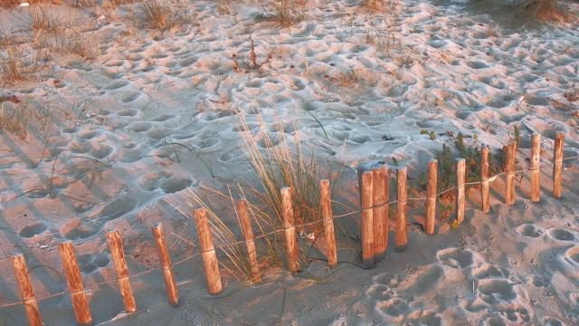 ... und KALT im Januar (das ist Reif auf dem Sand)