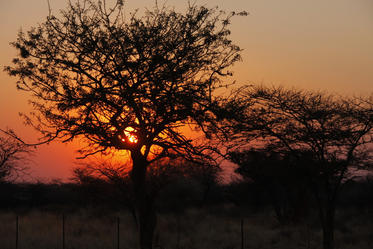 Sonnenuntergang auf der Farm Ondombo