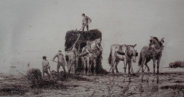 Chargement de goémon à la grève dans le Trégor, gravure de Faudacq (Coll privée)