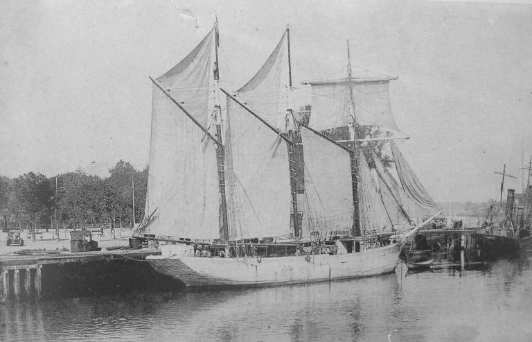 L'Alcyon au port de Paimpol il est armé comme chasseur pour Saint-Pierre (Photo AD22 inventaire du patrimoine maritime)