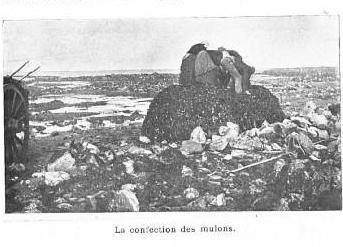 Les femmes et les hommes tassent et  serrent les cordages du mulon, appelé aussi drome