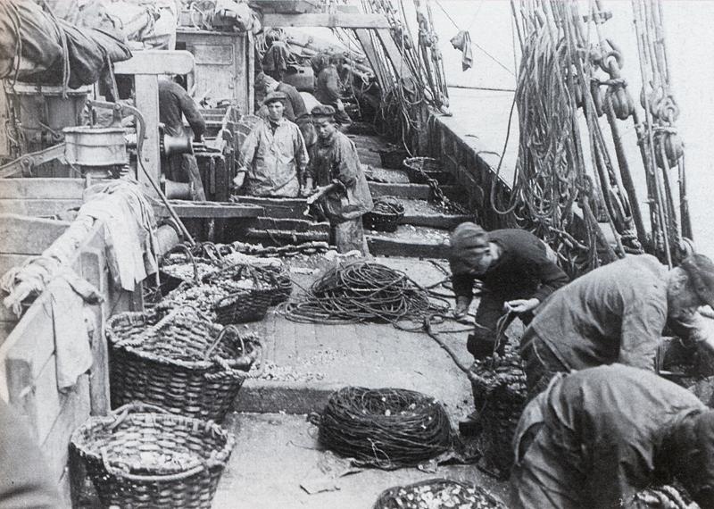 Le travail quotidien du boëttage des cordes à bord d'un voilier terre-neuvier