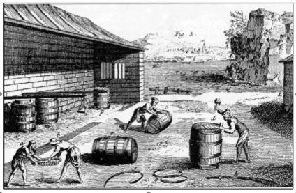 Presse à sardine au XVIII ème siècle, extrait d'une planche de l'encyclopédie méthodique