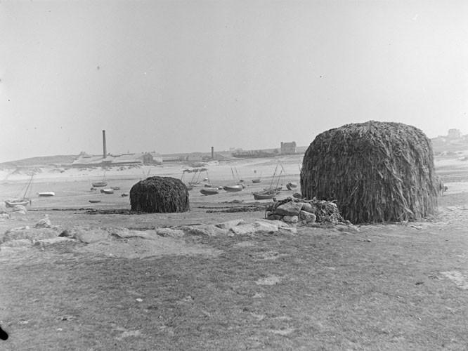 Usine de traitement de la « soude » de Lampaul Plouarzel, meules de goémon sec et canots goémoniers au mouillage