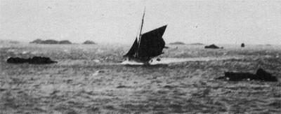 Retour d'un sloup par gros temps, les sloups de Loguivy à vivier sont rapides et très marins  (Collection Krog e Barz)