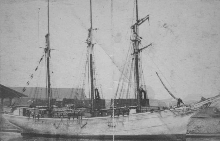 La goélette Pleubiannaise était une des plus grande goélette de cabotage de la presqu'île de Pleubian, sa perte a été cruellement ressentie